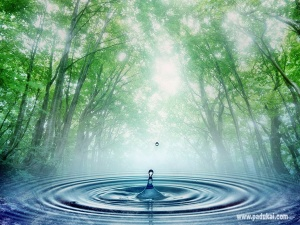 beautiful water scenery