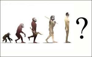 evolution_1505831c