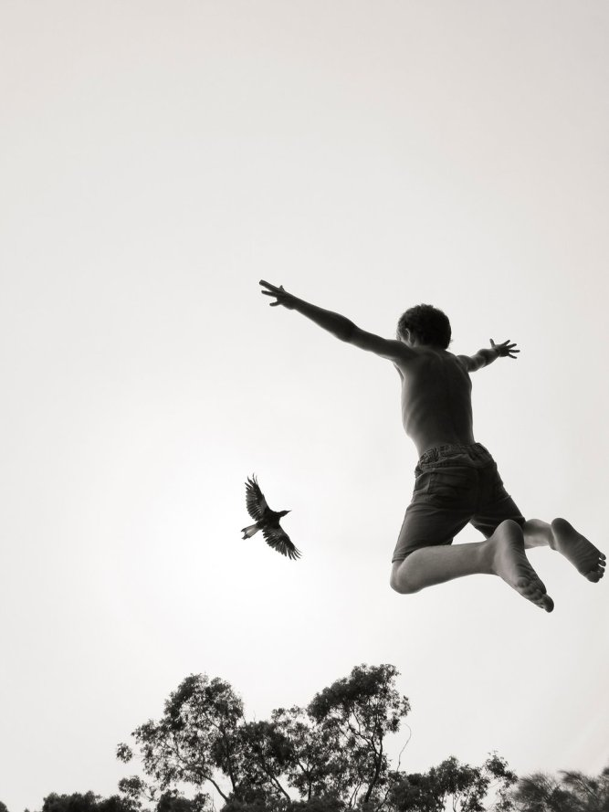 magpie-and-boy-jumping