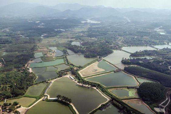 aquaculture-farms