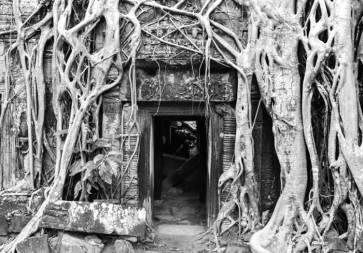 doorway-ta-prom